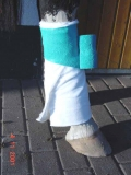 elastische selbsthaftende Bandage 10 cm breit
